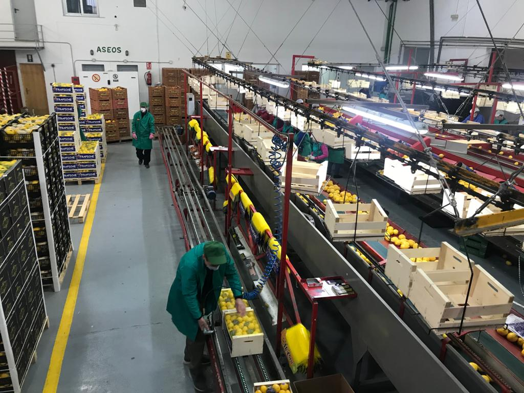 Ángel Villafranca (Cooperativas): «Hemos trabajado turnos de 24 horas pero las ayudas recibidas son insuficientes»