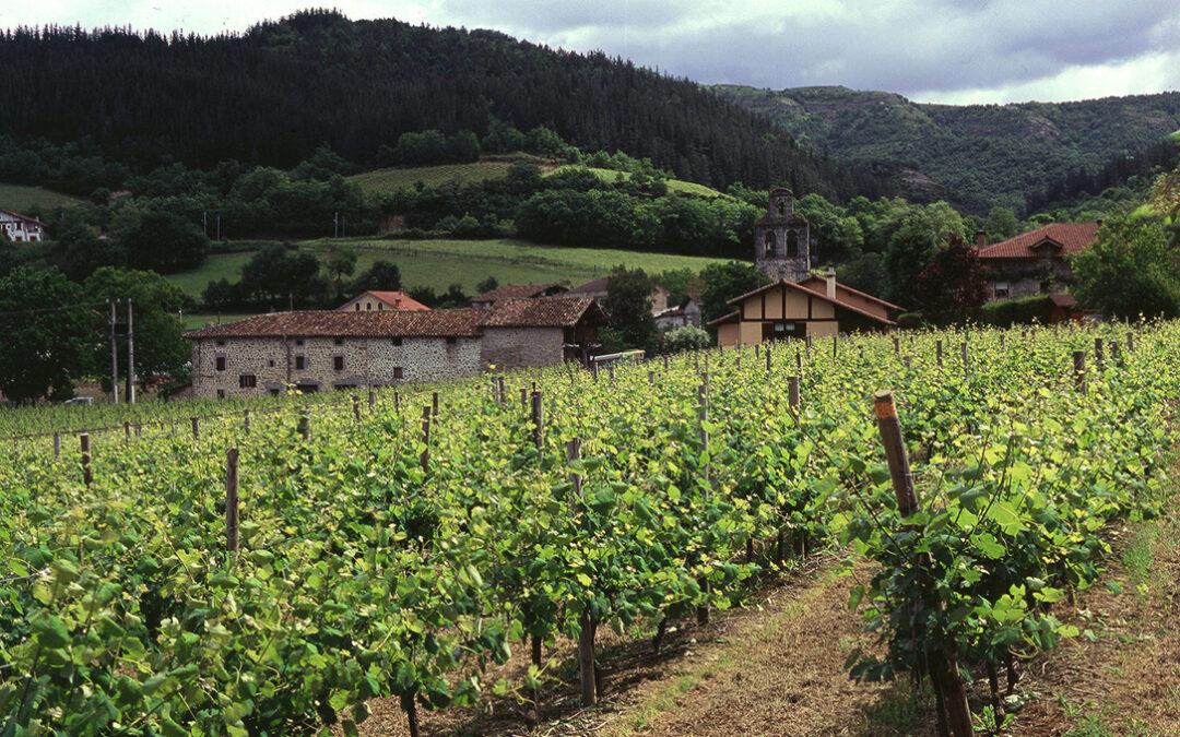 Viticultores, bodegas y destilerías cubre todos los cupos de destilación, almacenamiento y cosecha en verde de vino