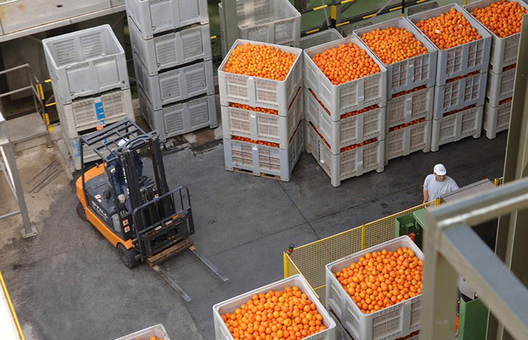 ENTREVISTA. J. M. Pozancos (FEPEX): «La UE no puede repetir los errores de la crisis sanitaria en la agricultura»