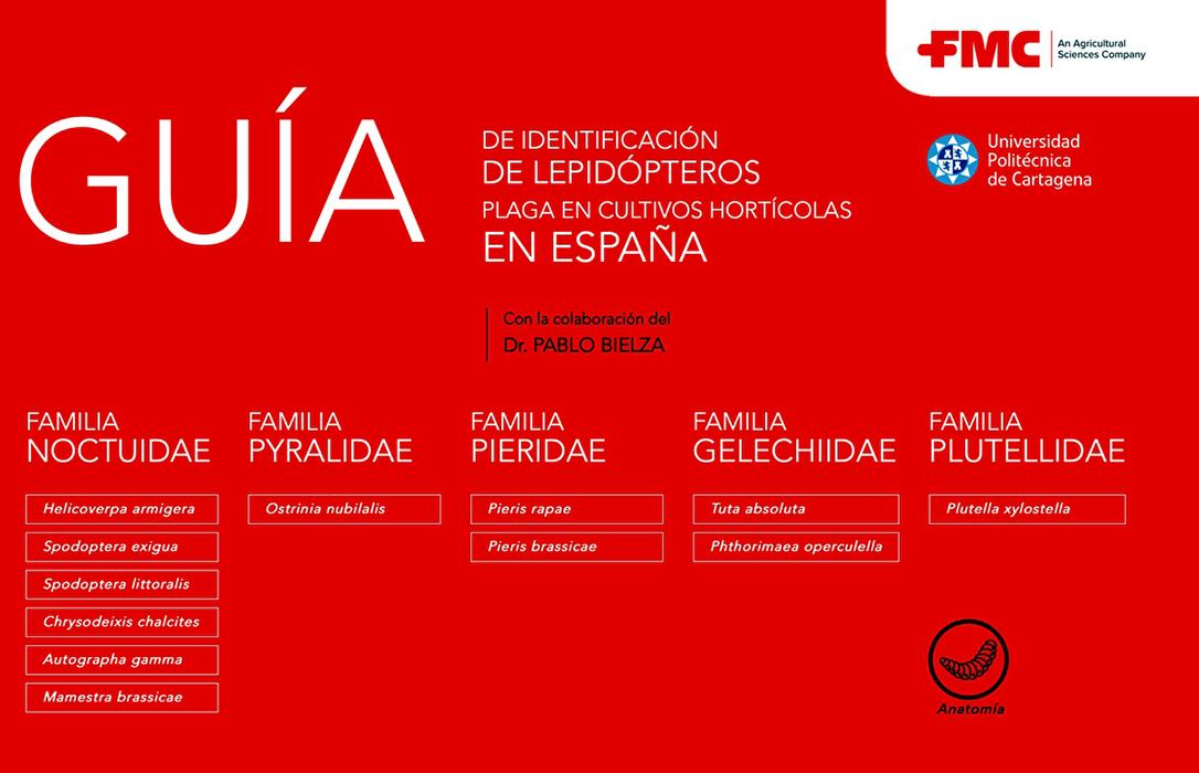 """FMC Agricultural Solutions lanza la práctica e interactiva """"Guía de Identificación de Lepidópteros FMC"""""""
