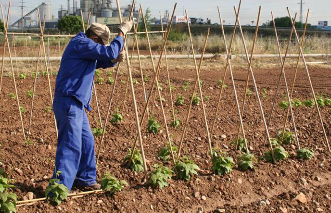 Madrid se compromete con el sector a tramitar las ayudas del Fondo Agrícola Europeo para el Desarrollo Rural