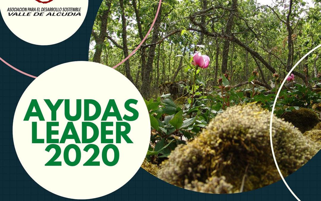 La ADS 'Valle de Alcudia' abre una nueva convocatoria de ayudas LEADER dotada en total con 750.000 euros