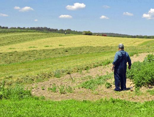 Planas iniciará la semana que viene con las CCAA el debate sobre qué es agricultor genuino y si hay derechos históricos en la PAC