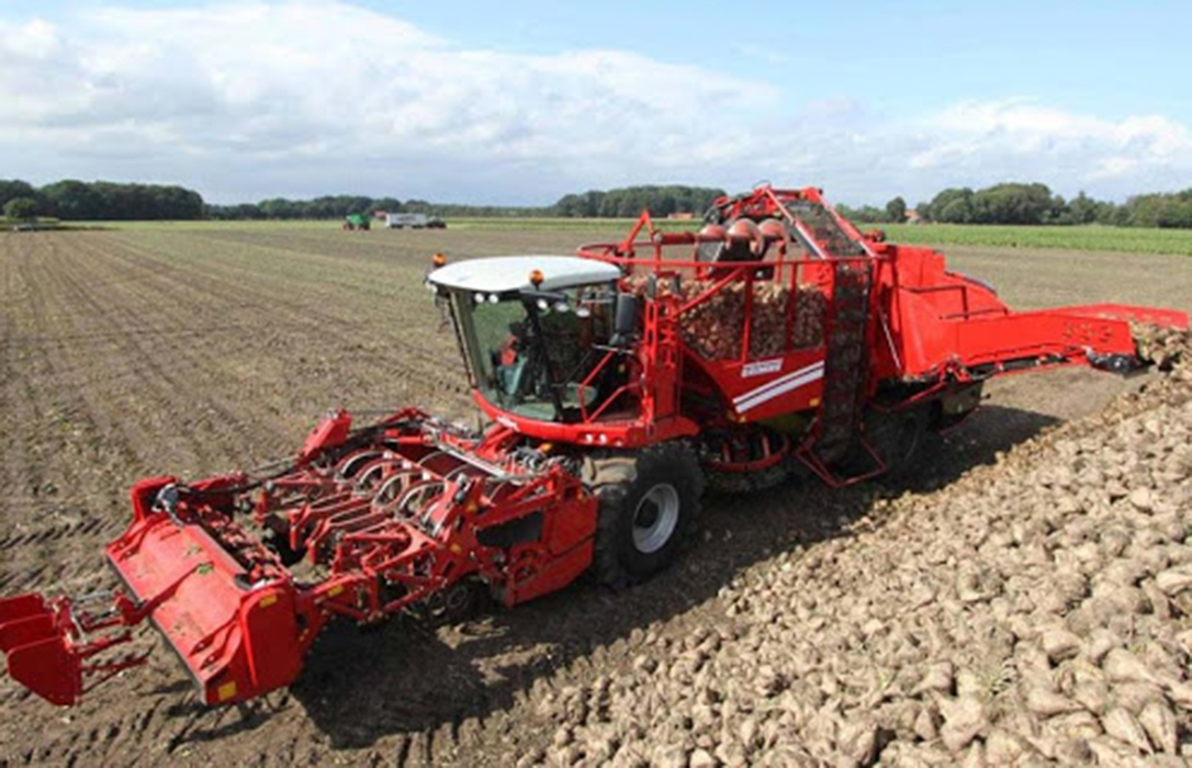 Acuerdo para un Modelo de Ingreso Garantizado para 3.900 hectáreas de cultivo de remolacha de secano en Andalucía