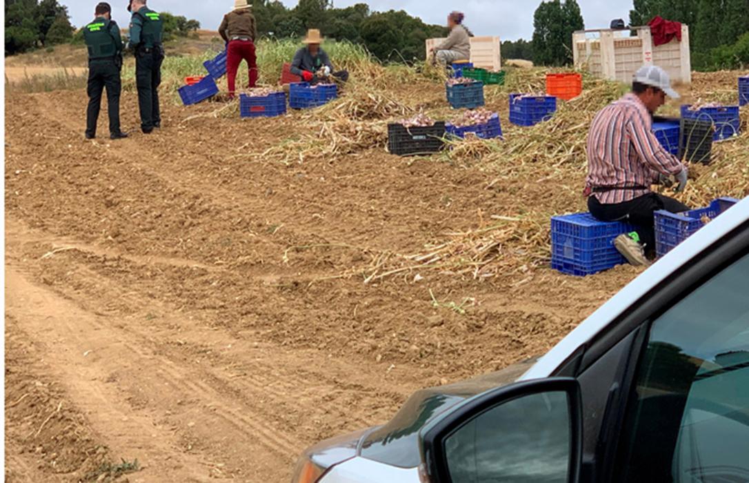 No son delincuentes: Denuncian el trato intimidatorio de las inspecciones de trabajo a las explotaciones agrarias y ganaderas