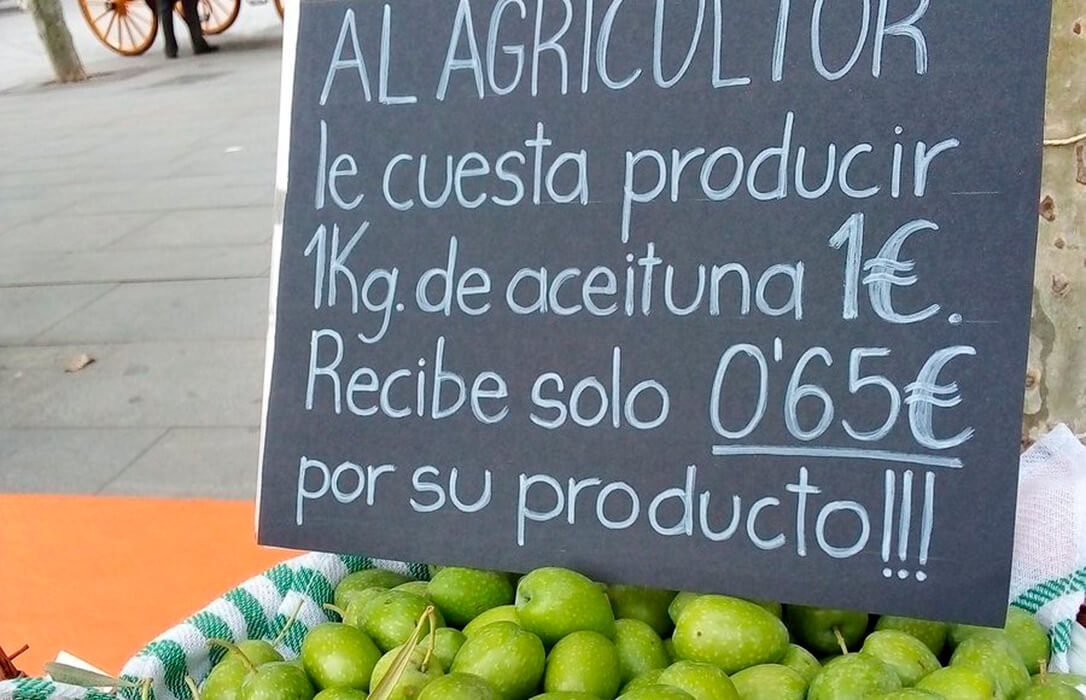 La aceituna de mesa también saldrá a la calle y se movilizará en agosto en Sevilla en demanda de mejores precios