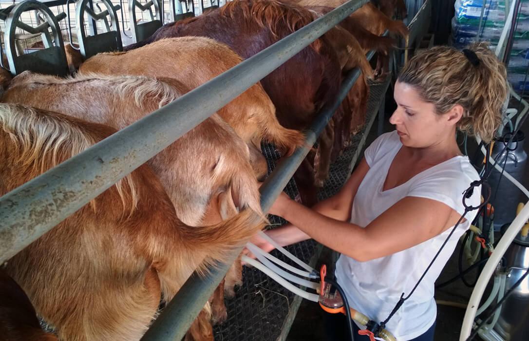 Relevo generacional y PAC: El pago de la ayuda complementaria a jóvenes agricultores se incrementa un 16% en la campaña 2019