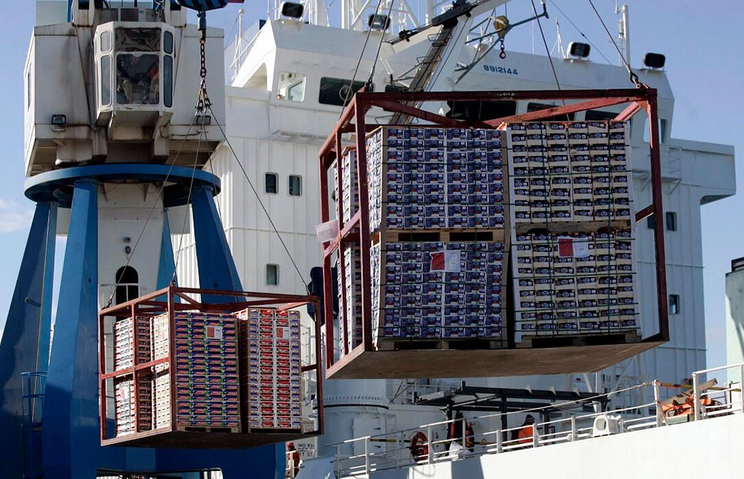 Hartos de esperar: Reclaman la activación inmediata de medidas adicionales y eficaces en las importaciones de cítricos