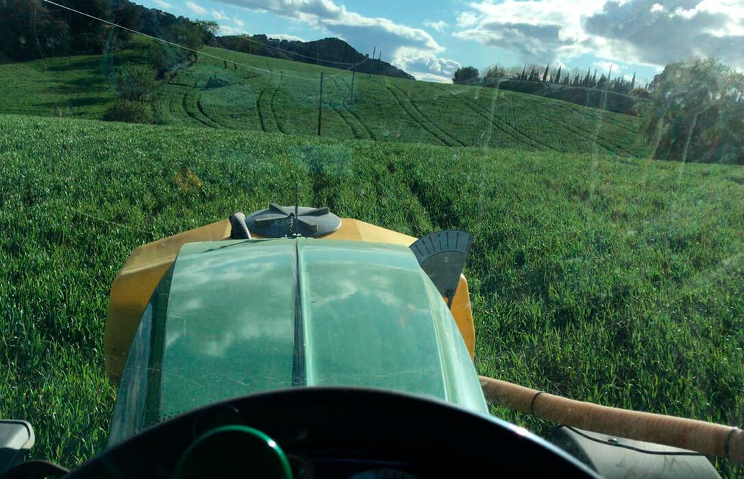 Miles de hectáreas de herbáceos se podrían quedar sin sembrar en Málaga por la falta de respaldo de Agroseguro