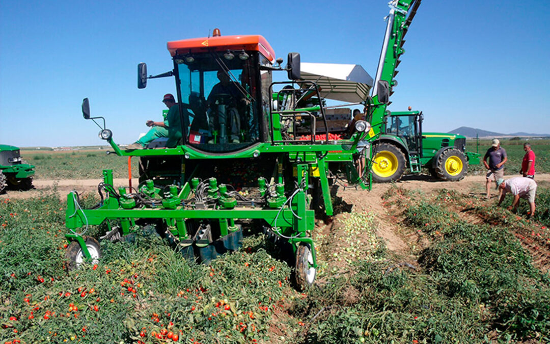 Reforma de la PAC: Del agricultor genuino al pluriactivo y ahora surge otra propuesta, el genuino plus