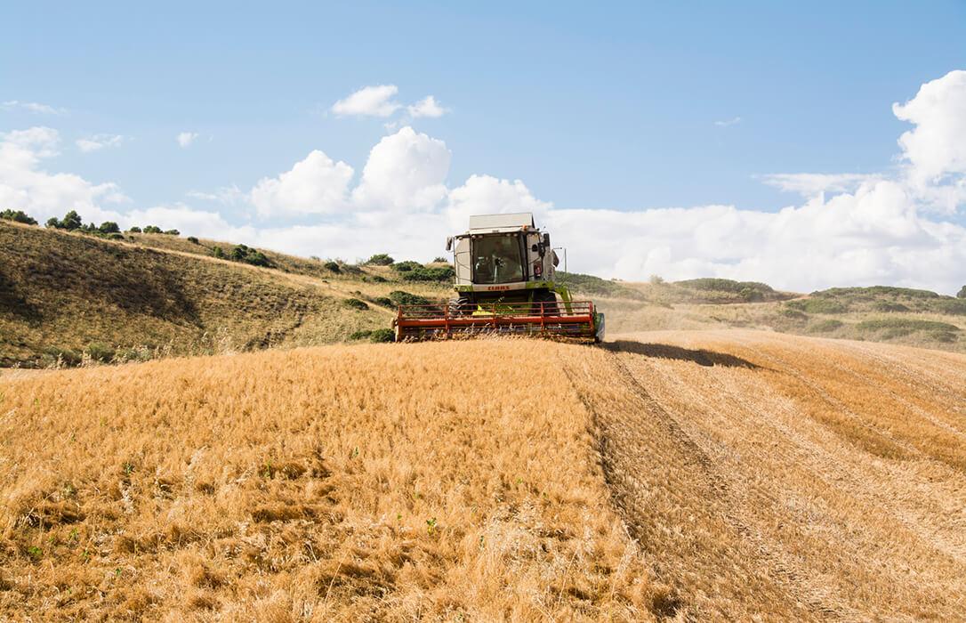 Pese a todas las críticas, los agricultores españoles cumplen con creces las exigencias medioambientales de la PAC