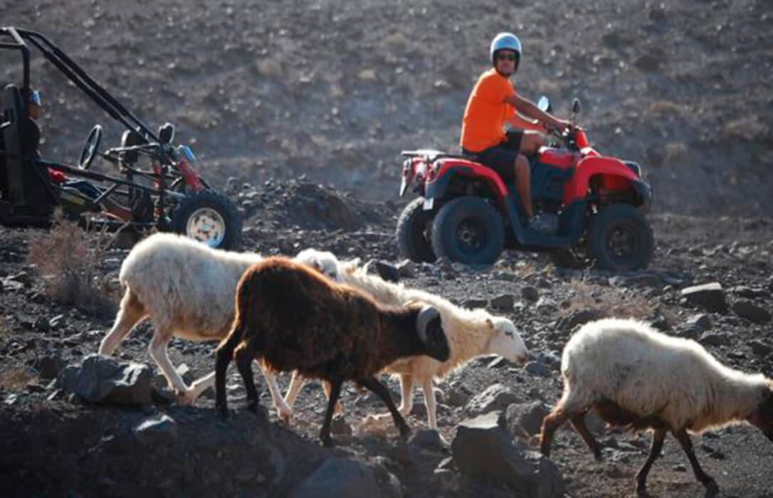 Pastor, de 64 años, con problemas de movilidad, afectado por el covid… no puede vender su explotación por falta de relevo generacional