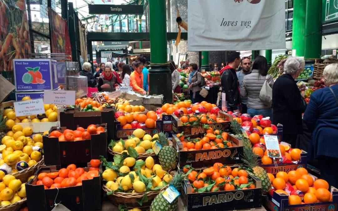 ENTREVISTA. J.M. Pozancos (Fepex): «Un no acuerdo con Reino Unido sería peor que el veto ruso para el sector hortofrutícola español»