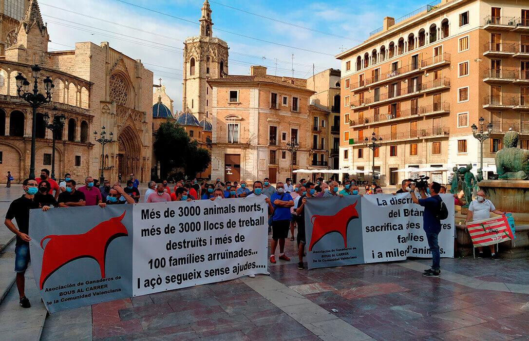 La cancelación de los festejos taurinos ha obligado ya al sacrificio de 3.000 reses por la falta de ayudas de la administración