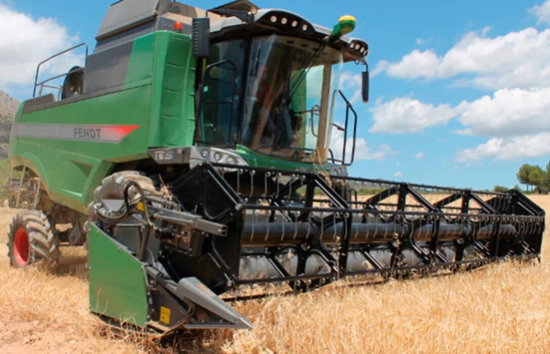 El trigo comienza a cotizar en León en el peor momento y arranca a 170€/t, once euros menos que hace un año