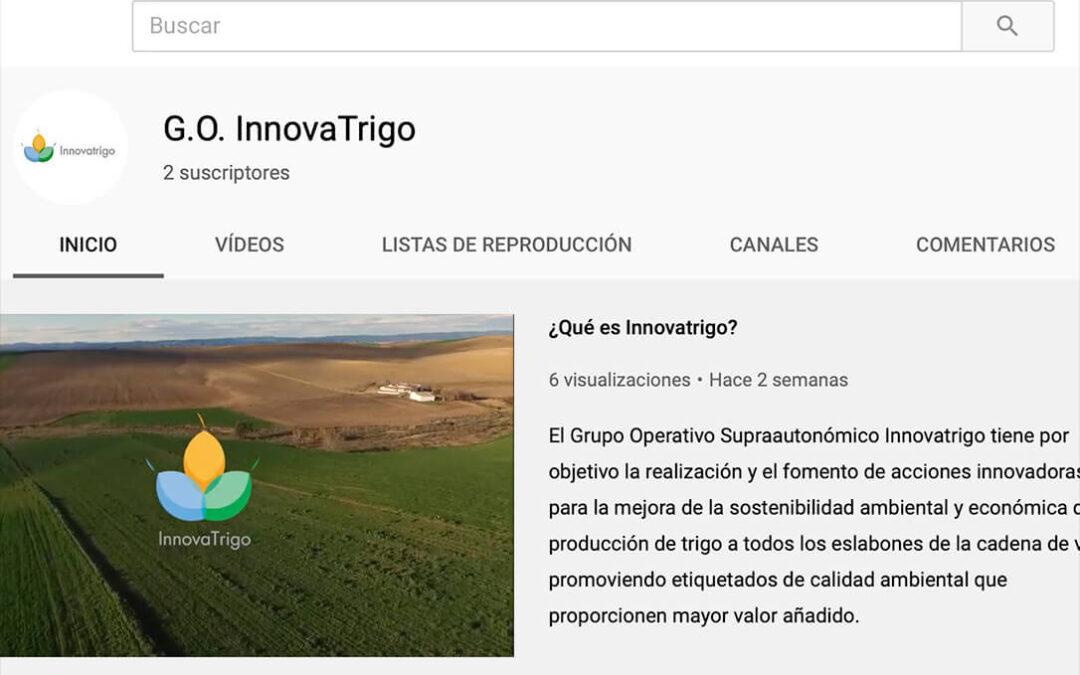 Disponibles en YouTube los videos de las últimas jornadas on line del Grupo Operativo Innovatrigo
