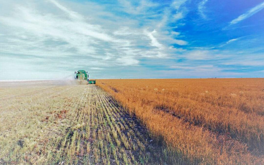 Satisfacción por la convocatoria de nuevas ayudas para la incorporación de jóvenes a la agricultura y ganadería en Cádiz