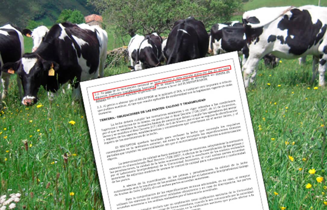 Se acabaron la paciencia y las irregularidades: Batería de denuncias contra 5 empresas lácteas por incumplir la Ley de la Cadena