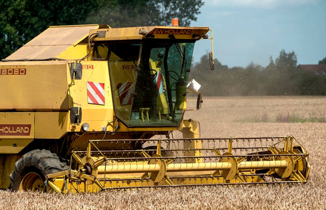 Los precios mayoristas de los cereales continuaron su tendencia alcista aunque de forma moderada con un par de euros de subida