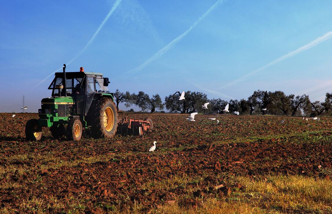 Denuncian que 62 millones de euros de fondos agrarios están paralizados por el colapso administrativo por la pandemia
