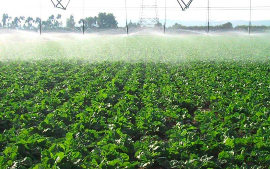 Congreso Ibérico de Gestión y Planificación del Agua: «La agricultura intensiva española está en el límite»