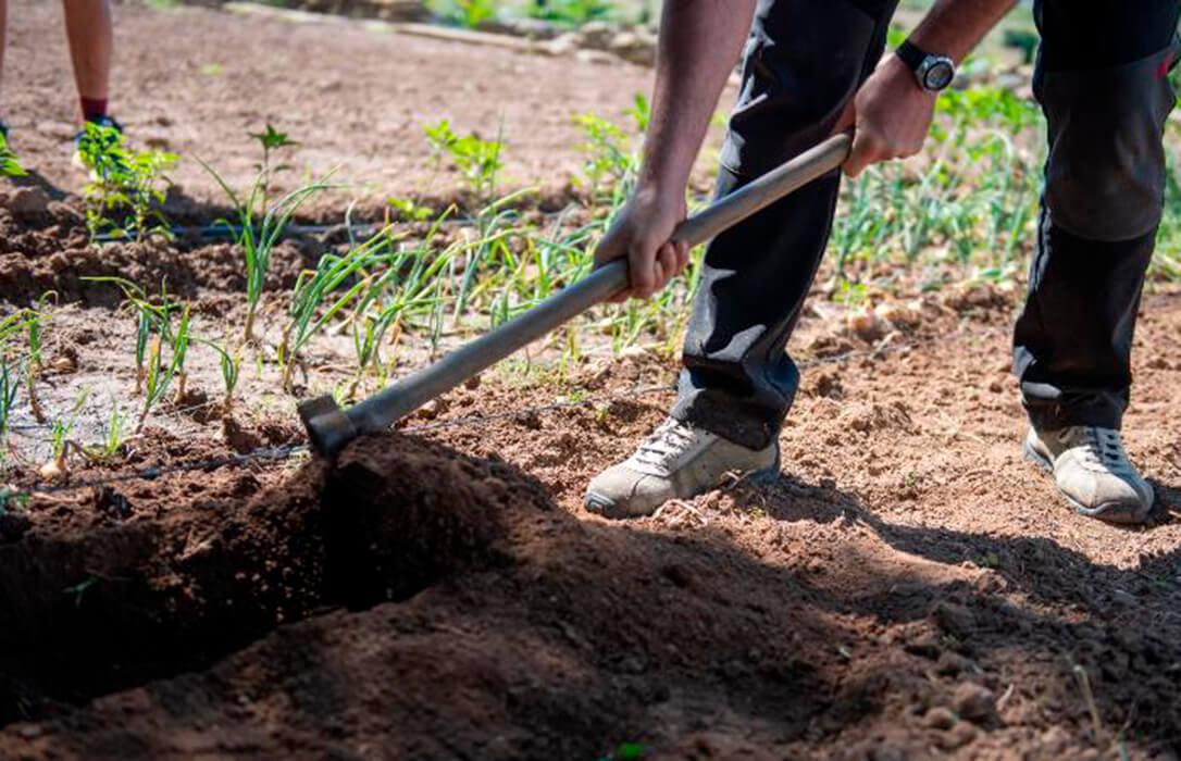 La Rioja apuesta por una definición de agricultor genuino que permita reducir el número de perceptores de ayudas PAC en España