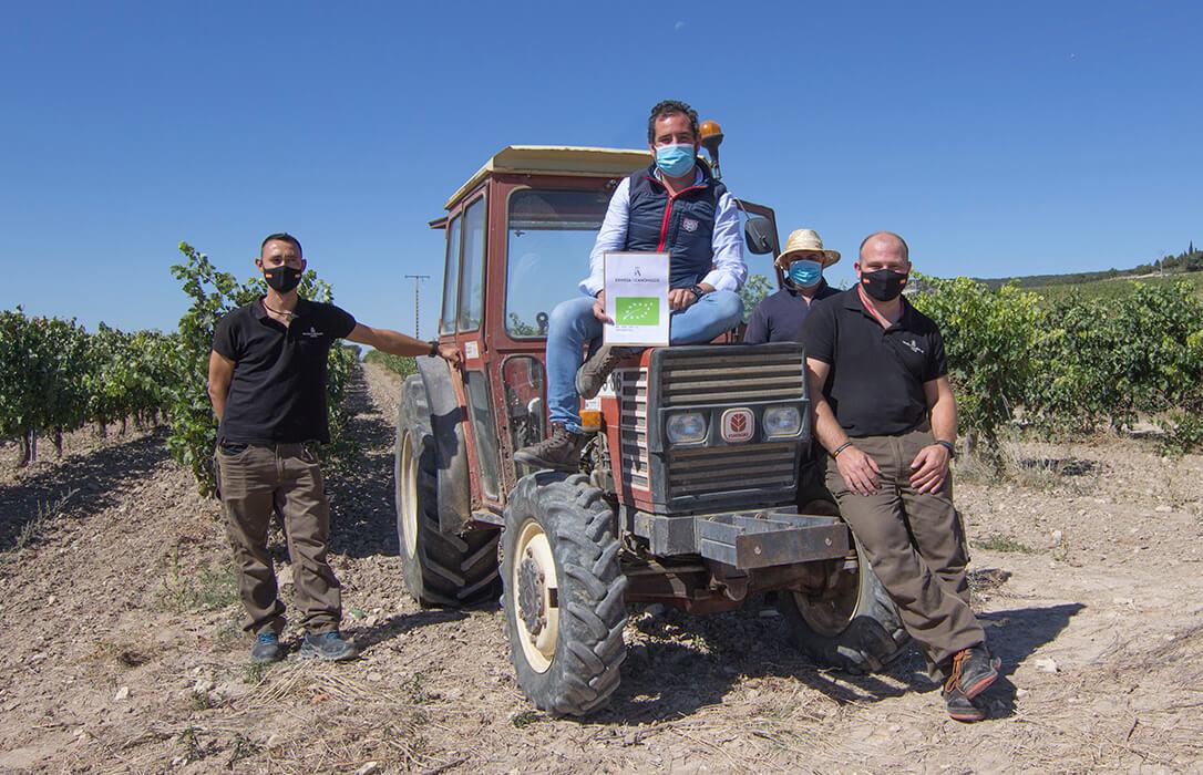 La bodega ribereña Dehesa de los Canónigos recibe el Certificado de Viticultura Ecológica para sus 60 hectáreas de viñedo