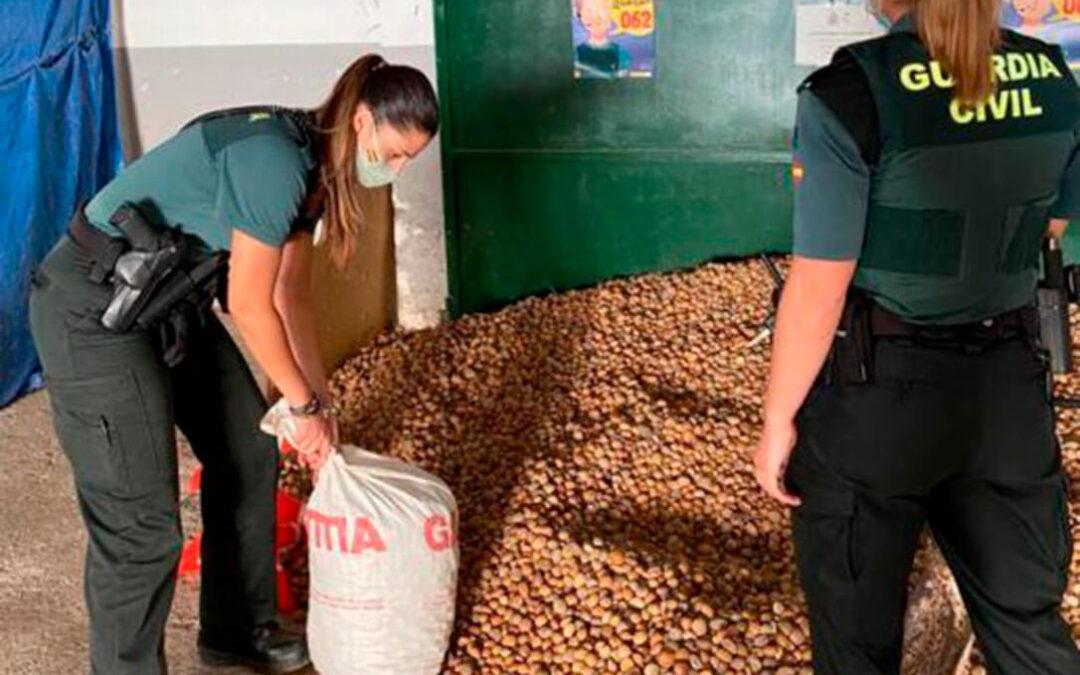 La Guardia Civil logra detener a dos personas e impedir el robo de casi dos toneladas de almendras en dos operaciones en el campo