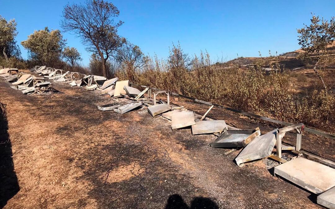 Reclaman que tras el trágico incendio de Huelva no se deje de lado a la numerosa ganadería afectada por las llamas