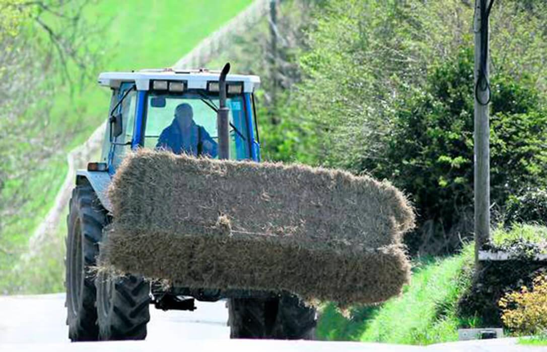Derechos de pago, regiones, agricultor pluriactivo…: Las claves de por qué Andalucía se opone a la PAC de Planas