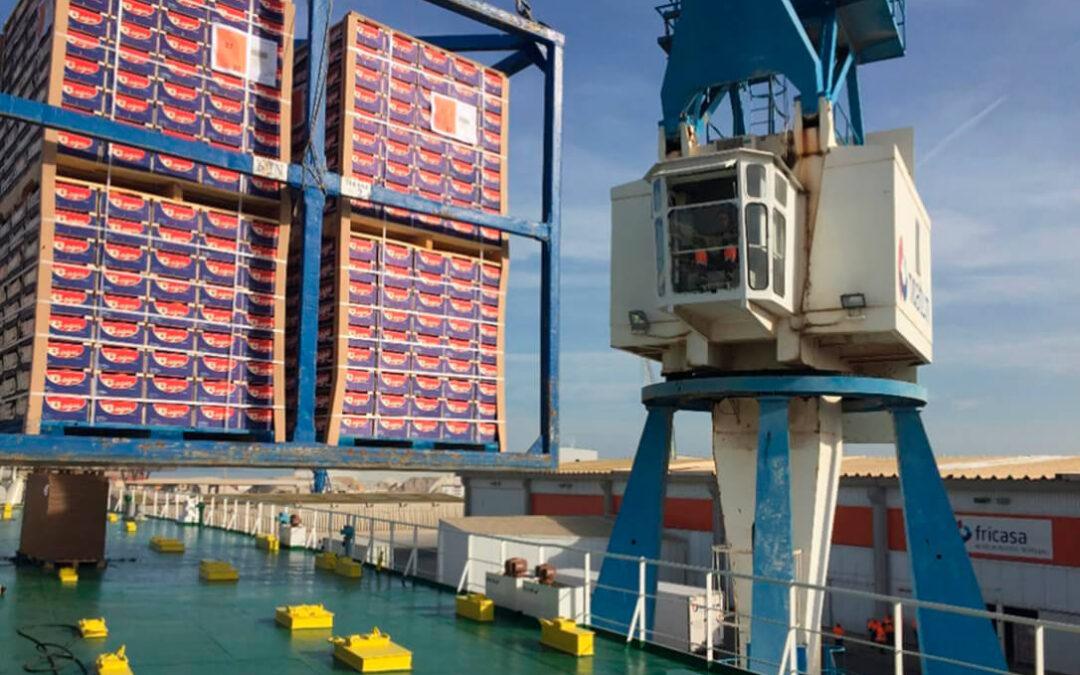 El sector citrícola español no duda ni un momento y acusa a Sudáfrica de mentir sobre el riesgo en sus exportaciones