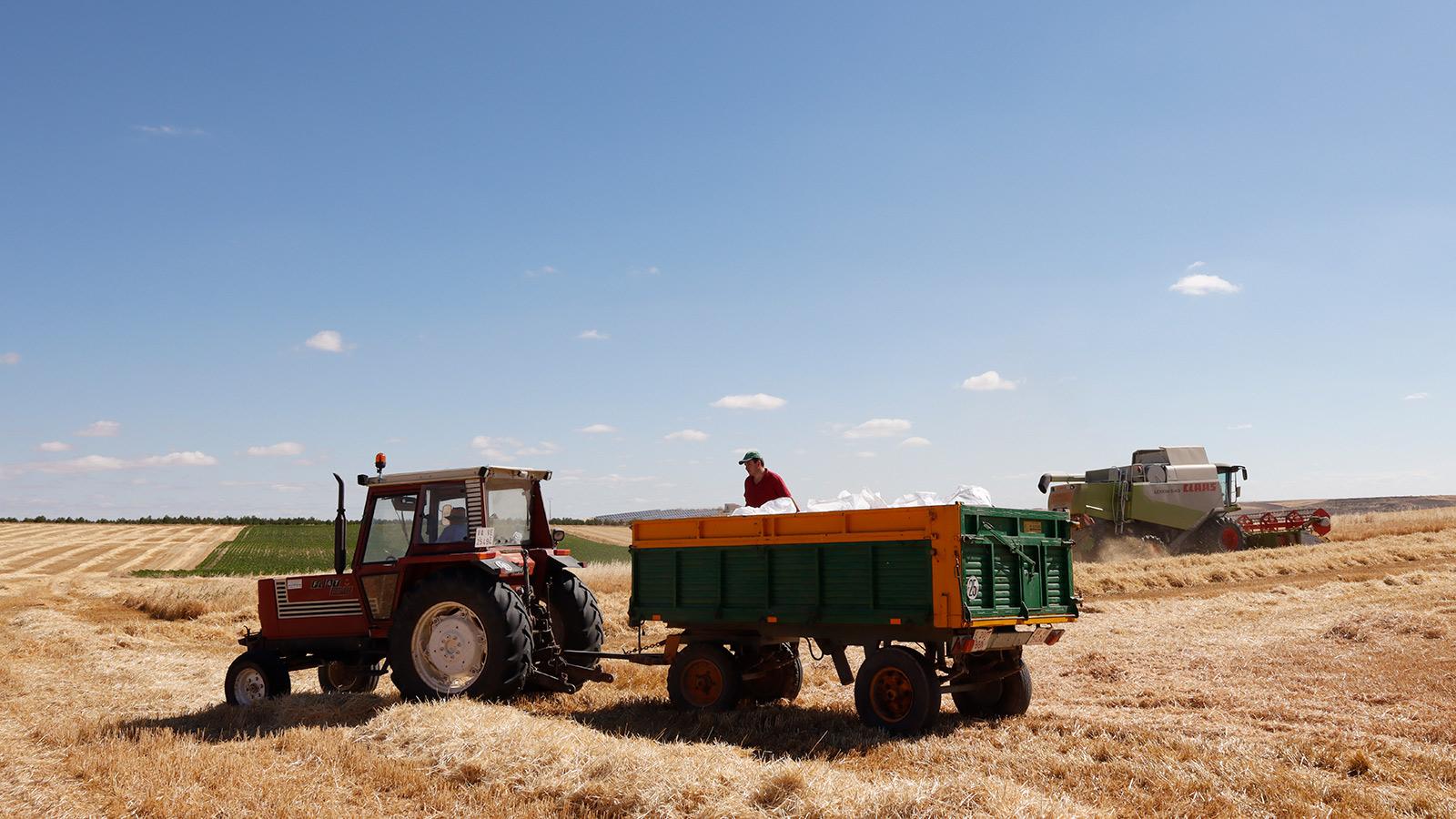 Hay que cambiar el concepto: «Los agricultores y ganaderos europeos debemos ser protagonistas y no víctimas del Pacto Verde»