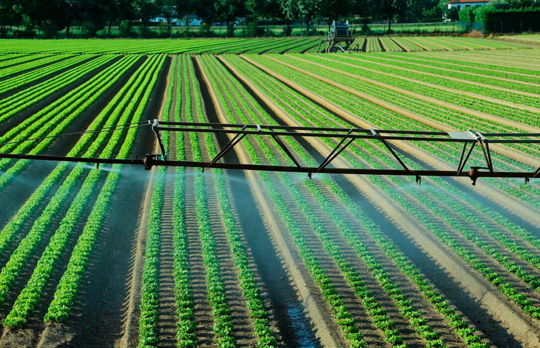 Suez Agriculture y la Universidad de Córdoba se alían para impulsar la formación para una agricultura más sostenible