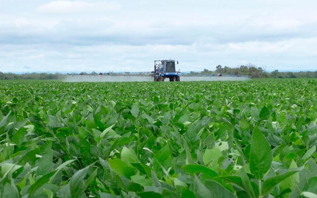 Los fabricantes creen que la reducción del uso de fertilizantes que impondrá el Pacto Verde haría insostenibles muchos cultivos en España