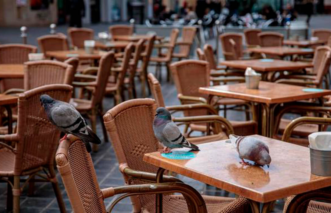 Todo el sector respalda a bares y restaurantes y recuerdan que solo producen menos del 3,5% del total de casos de Covid