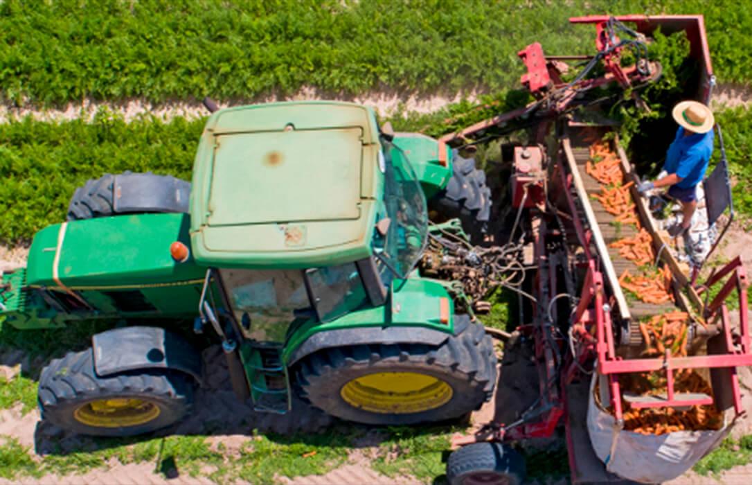 Estado de alarma en media España: Los agricultores deberán volver a rescatar los papeles que le acreditan como tales para trabajar