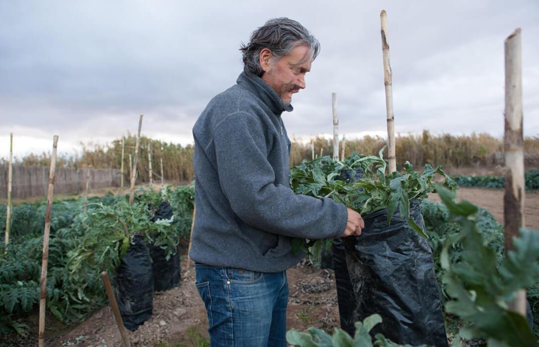 No más cambios: Defienden el horario de invierno por ser el más beneficioso para las labores del campo