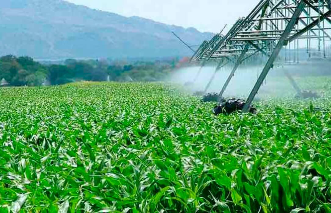 Los regantes piden que la planificación hidrológica recoja la demanda de agua y no un «enfoque propio del ecologismo radical»