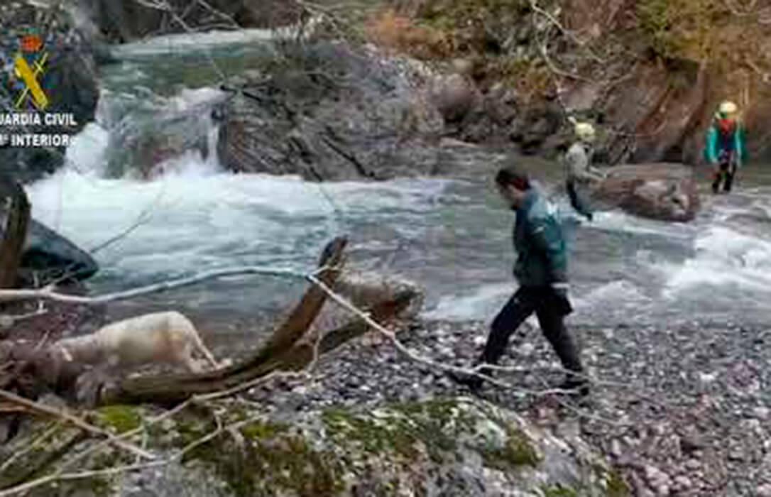 La Guardia civil ayuda a un pastor a recuperar varias ovejas que quedaron atrapadas tras caer hasta la presa de Izas