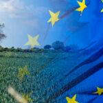El Parlamento Europeo fija su posición sobre una PAC pensada para jóvenes, profesionales, explotaciones pequeñas y más verde