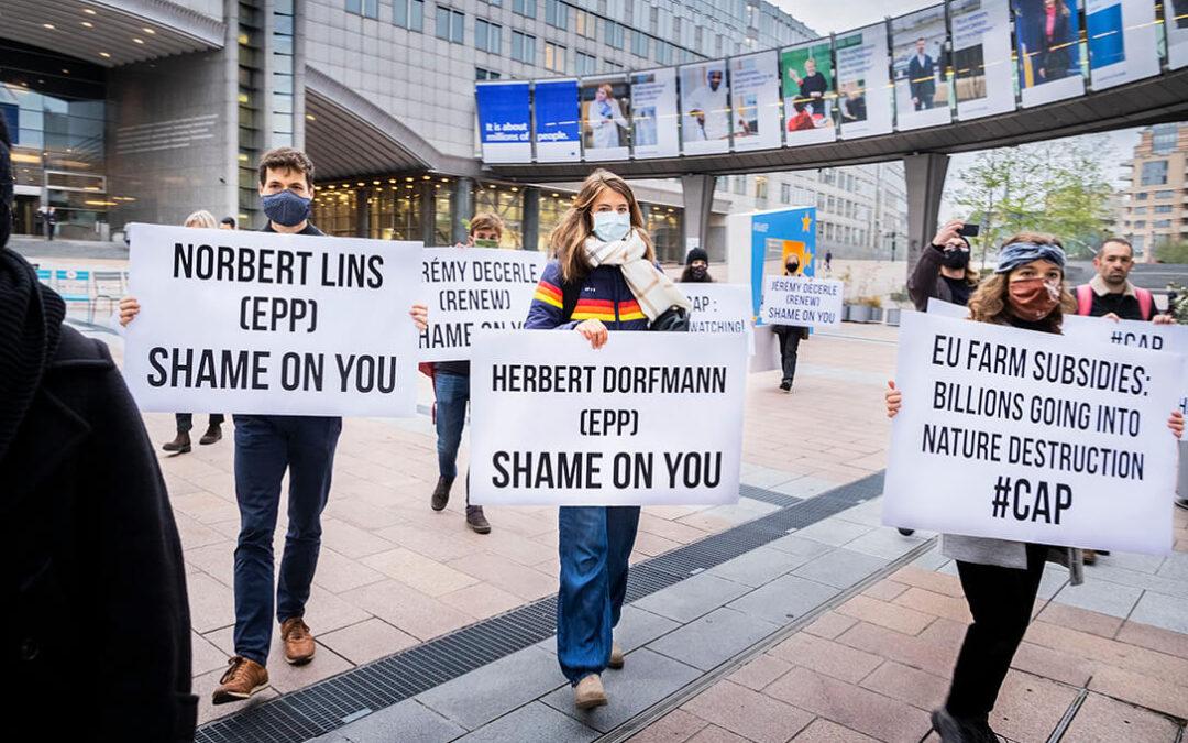 Protesta contra la PAC: Los ecologistas acusan al Parlamento Europeo de dar «un beso de la muerte al Pacto Verde»