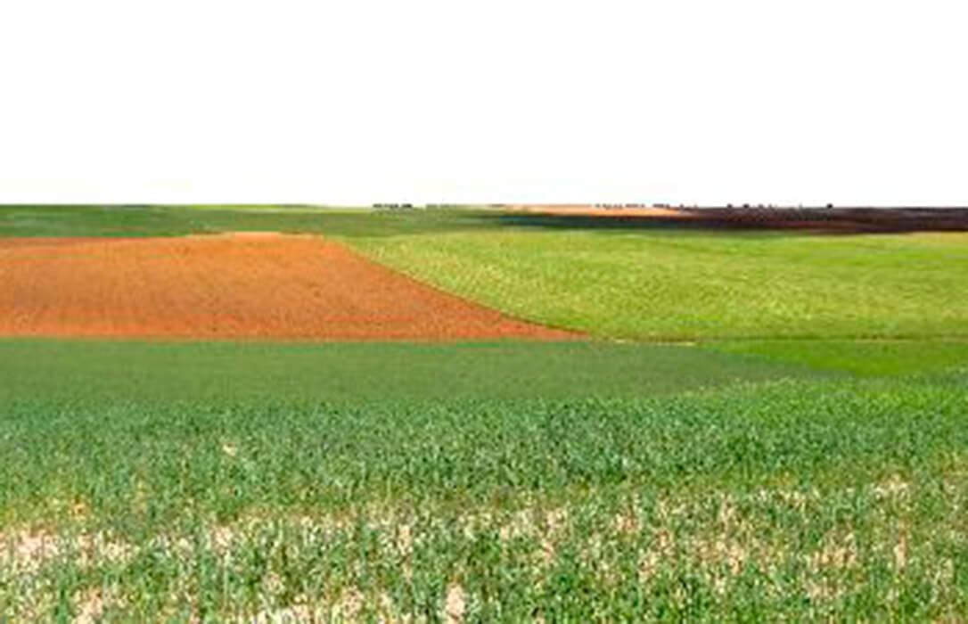 Creando una red para para la conservación de nuestros paisajes agrarios de la mano de la Fundación Global Nature