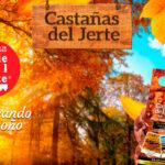 'Saboreando el otoño', una campaña que aúna gastronomía, turismo y agricultura para potenciar el Valle del Jerte y La Vera