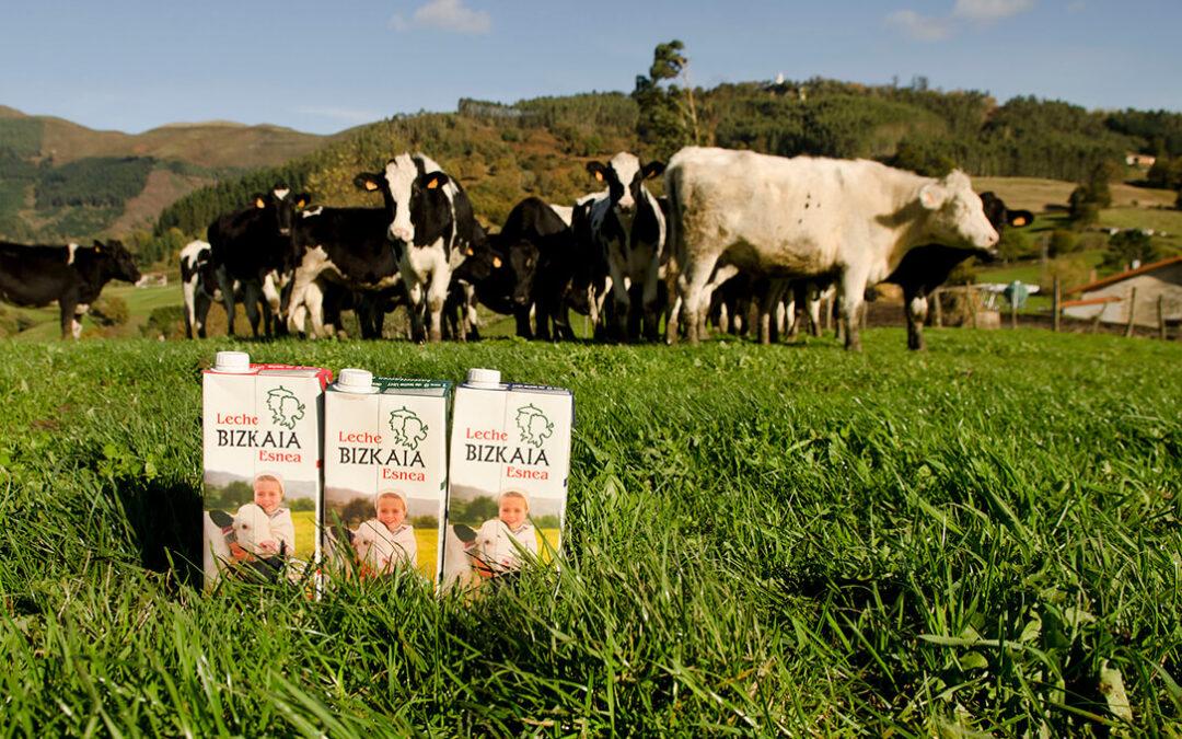 Para evitar defraudar a los consumidores: Reclaman un etiquetado de la leche claro en origen de producción y envasado