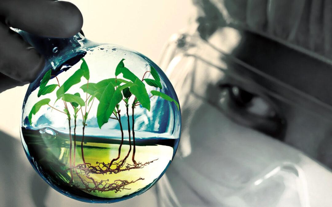 FMC vence en las categorías a la mejor línea de Investigación y mejor Bioestimulante del Sector en los Crop Science Awards