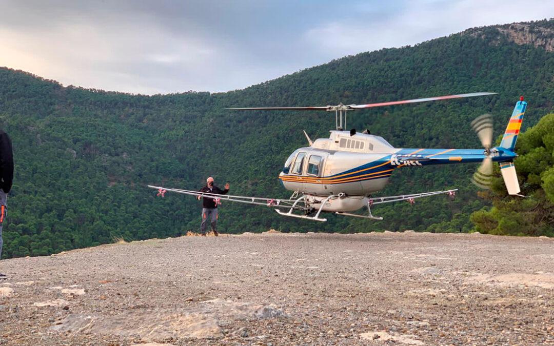 Se fumigarán con productos ecológicos 2.300 hectáreas de montes de 6 municipios murcianos contra la procesionaria del pino