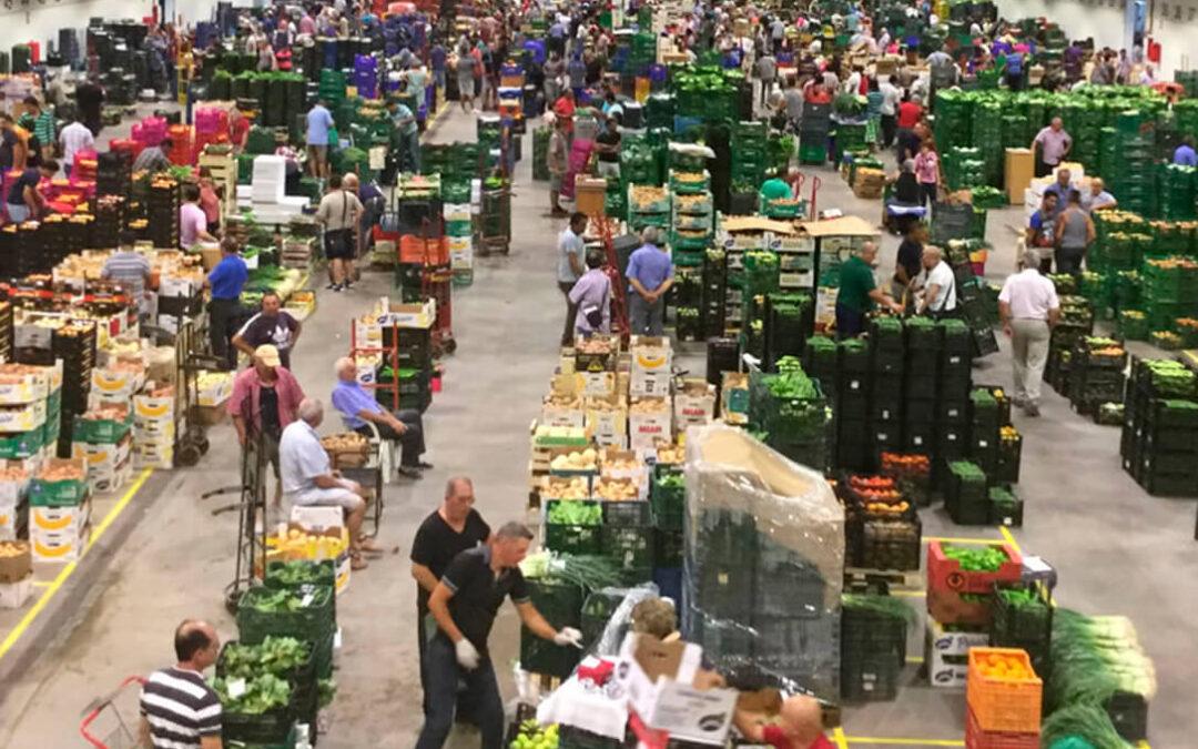 Solidaridad en tiempos de pandemia: La plantilla de Mercavalència dona el dinero de su comida de navidad a tres ONG