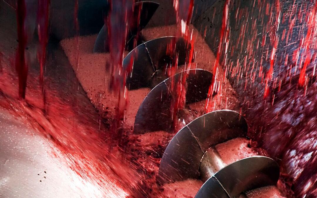 Consideran insuficiente subir de 10 a 12,5% el contenido de alcohol en vino y reclaman que se alcance el máximo del 15%