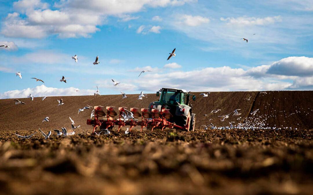 El grupo de expertos por la PAC aboga por unos ecoesquemas simples y accesibles a la mayoría del sector agrario