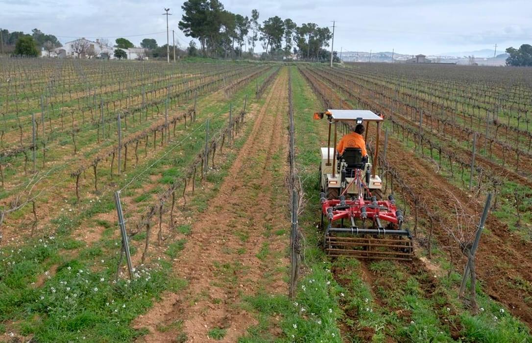 Planas ante la PAC: «Centrará las ayudas en el agricultor profesional de clase media sin olvidar al pequeño no profesional»